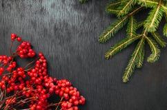 Ель и рябина Черная предпосылка звезды абстрактной картины конструкции украшения рождества предпосылки темной красные белые Краси Стоковые Изображения