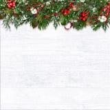 Ель и ягоды рождества на деревянной белой предпосылке стоковые изображения