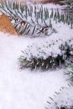 Ель лежа на белом снежке Стоковые Изображения
