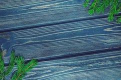 Ель рождества на деревянной предпосылке с конусами Стоковое Изображение