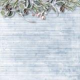 Ель рождества с падубом, снежностями на белой доске стоковое фото
