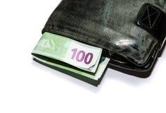 100 денег евро Стоковое Изображение RF