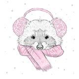 Енот вектора милый вектор raccoon Енот покрашенный вручную Енот в шарфе и наушниках зимы заморозьте зиму вала солнца снежка реки  Стоковые Изображения RF