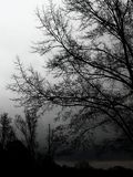день бурный Стоковое Фото