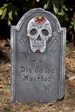 день мертвый Стоковые Изображения