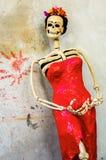 день мертвый Catrina на грубой стене Стоковое Изображение RF