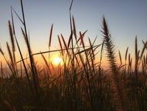 день рассвета новый Стоковые Фотографии RF