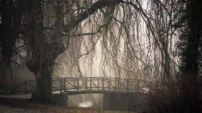 день туманнейший Стоковые Фото