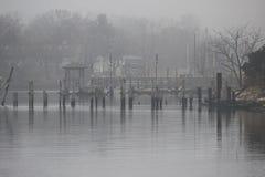 день туманнейший Стоковое Фото