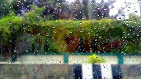 день rainny Стоковая Фотография