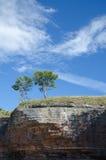 2 дерева на крае образования скалы Стоковое Изображение