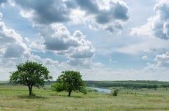2 дерева приближают к реке и драматическому небу Стоковая Фотография