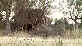 деревенский дом старый сток-видео