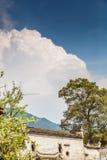 дерево и облако дома Стоковые Изображения