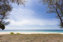 дерево на тропическом пляже, красивой предпосылке пейзажа на лето a Стоковые Фото