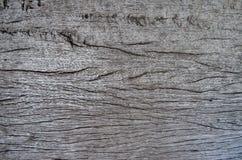 деревянная предпосылка листа Стоковые Изображения