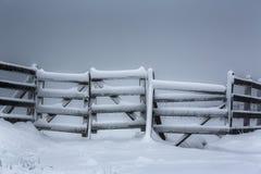 деревянное замерли загородкой, котор Стоковая Фотография RF
