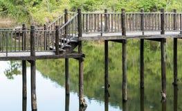 деревянное моста старое Стоковое Изображение RF