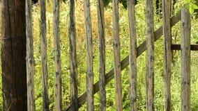 деревянное строба старое сток-видео