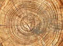 деревянное треснутое предпосылкой Стоковая Фотография