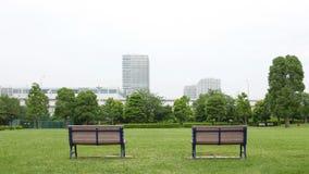 2 деревянные скамьи и парка пола травы публично Стоковые Фотографии RF