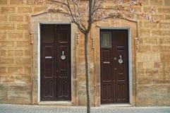 2 деревянных двери с зацветая деревом Стоковое фото RF