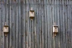 3 деревянных дома для птиц Стоковое Изображение RF