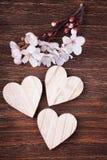 3 деревянных сердца помещенного славно с вишневым цветом весны Стоковая Фотография