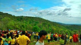 лесовозвращение стоковая фотография rf