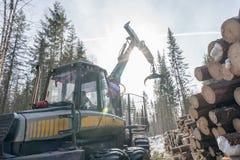 лесохозяйство Изображение лесопогрузчика на работе в древесинах зимы стоковые фото