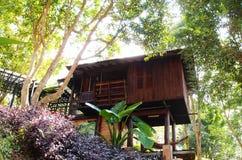 Естественная архитектура виллы курорта стиля Стоковое Изображение RF