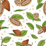 Естественная безшовная картина со стручками или плодами дерева какао, фасоли или семена и листья вручают нарисованный на белой пр бесплатная иллюстрация