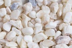 Естественная белая текстура камней Стоковая Фотография