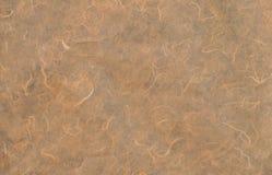 Естественная бумажная текстура Стоковые Фото