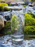 Естественная вода в стекле стоковые изображения rf