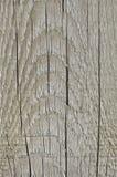Естественная выдержанная доска серого Sepia Taupe Tan деревянная, треснутая предпосылка пиломатериала деревянной текстуры крупной Стоковая Фотография RF