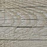 Естественная выдержанная доска серого Sepia Taupe Tan деревянная, треснутая предпосылка пиломатериала деревянной текстуры крупной Стоковая Фотография