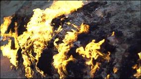 Естественная горящая земля Горя природный газ от подполья сток-видео