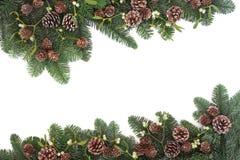 Естественная граница зимы Стоковая Фотография RF