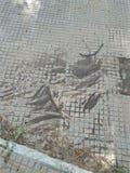 Естественная грязь стоковое фото rf