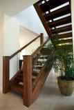 Естественная деревянная лестница Стоковая Фотография RF
