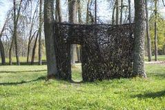 естественная древесина стены Стоковые Фотографии RF