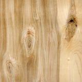 Естественная деревянная текстура стоковые изображения rf
