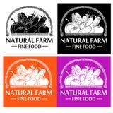 Естественная еда фермы Иллюстрация вектора