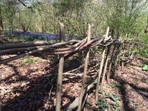 Естественная загородка Стоковая Фотография RF
