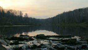 Естественная запруда ` s бобра на пруде во времени вечера весны леса предыдущем видеоматериал