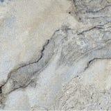 Естественная каменная печать с высокой разверткой разрешения Стоковое Изображение