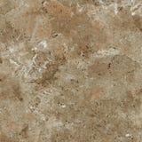 Естественная каменная печать с высокой разверткой разрешения Стоковая Фотография