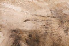 Естественная картина агата Стоковое Фото
