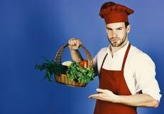 Естественная концепция кухни Человек с бородой на голубой предпосылке, космосе экземпляра Кашевар с серьезной стороной держит пле Стоковая Фотография